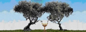 two-olive-trees-two-witnesses