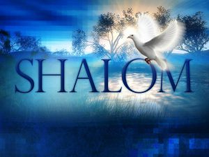shalom-and-dove