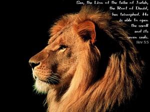 Leeuw van Judah