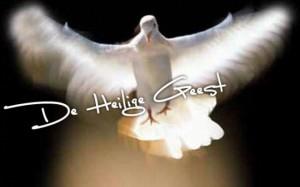Heilige Geest - duif