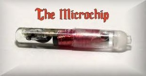 microchip2-300x157