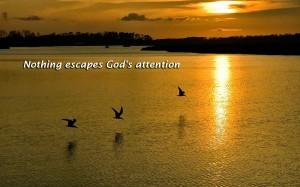 God ziet alles, niets ontsnapt aan Zijn aandacht