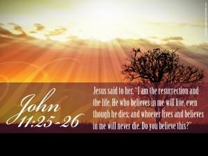 Johannes 11 Gelooft u dit