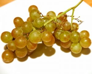 Moscatel druiven