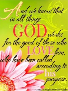 Romans 8,28