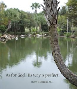 Zijn weg is volmaakt!