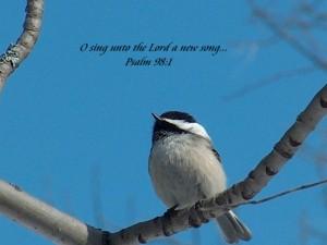 Zingen voor de Heer