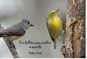 heb je naaste lief als jezelf - vogeltjes