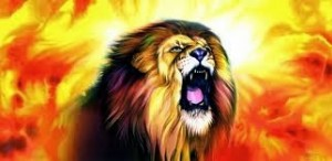 verily the lion growls