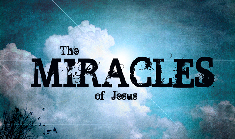 Image result for jesus miracles