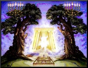 Zacharia 4, vers 11 De twee olijfbomen