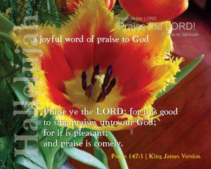Psalm 147, verse 1