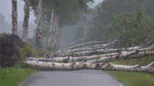 very-heavy-windgusts-netherlands