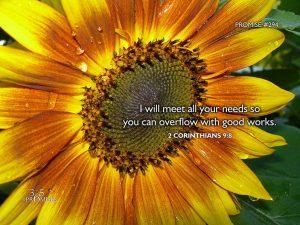 2-corinthians-9-verse-8